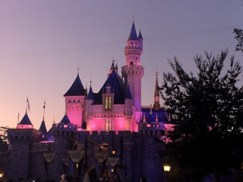 The magical castle of DisneyLand has awaited visitors for so long. Disney lovers are frustrated that they don